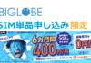 〜19/6/30) SIM単品申し込みの人におすすめ。BIGLOBEモバイルの6ヶ月間400円キャンペーン